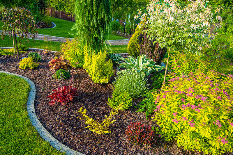 Photo Of A Well Landscaped Garden In Morning Light.